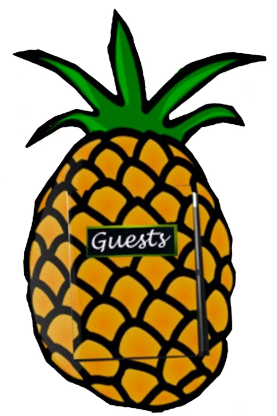 pineapple guestbook