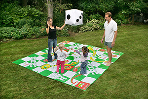 Snakes_and_Ladders_Outdoor_Image_300x