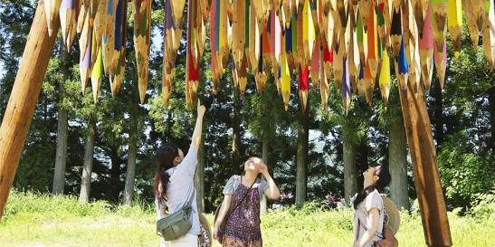 Echigo-Tsumari Art Field