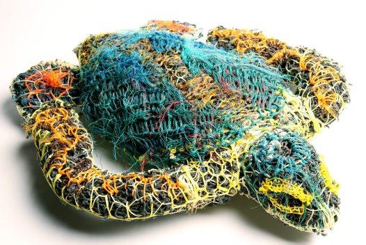 turtle 5_big